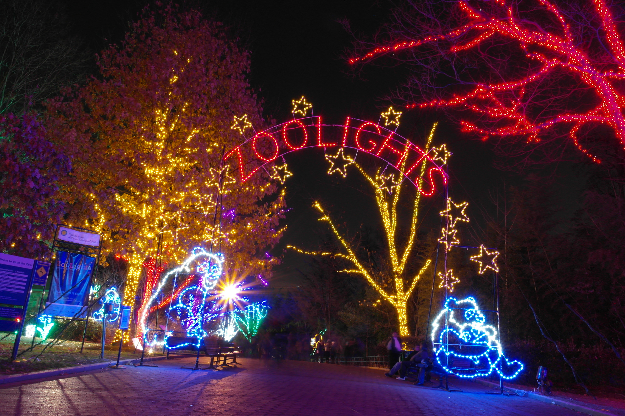 Christmas Time In Washington Dc.Celebrate The Holiday Season With These Local Events Go Brent