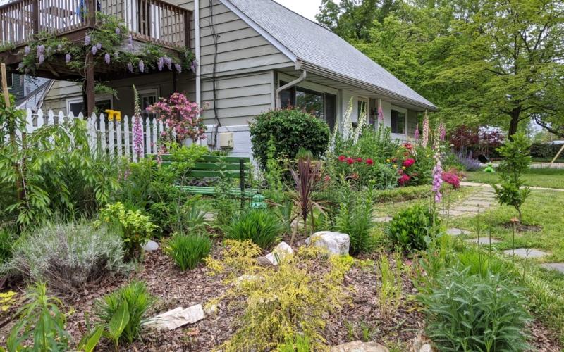 Dryden Garden 3